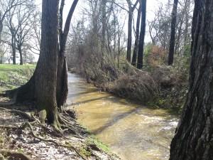 banita creek park north 2