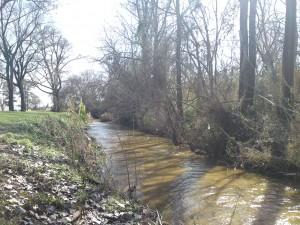 banita creek park north 8